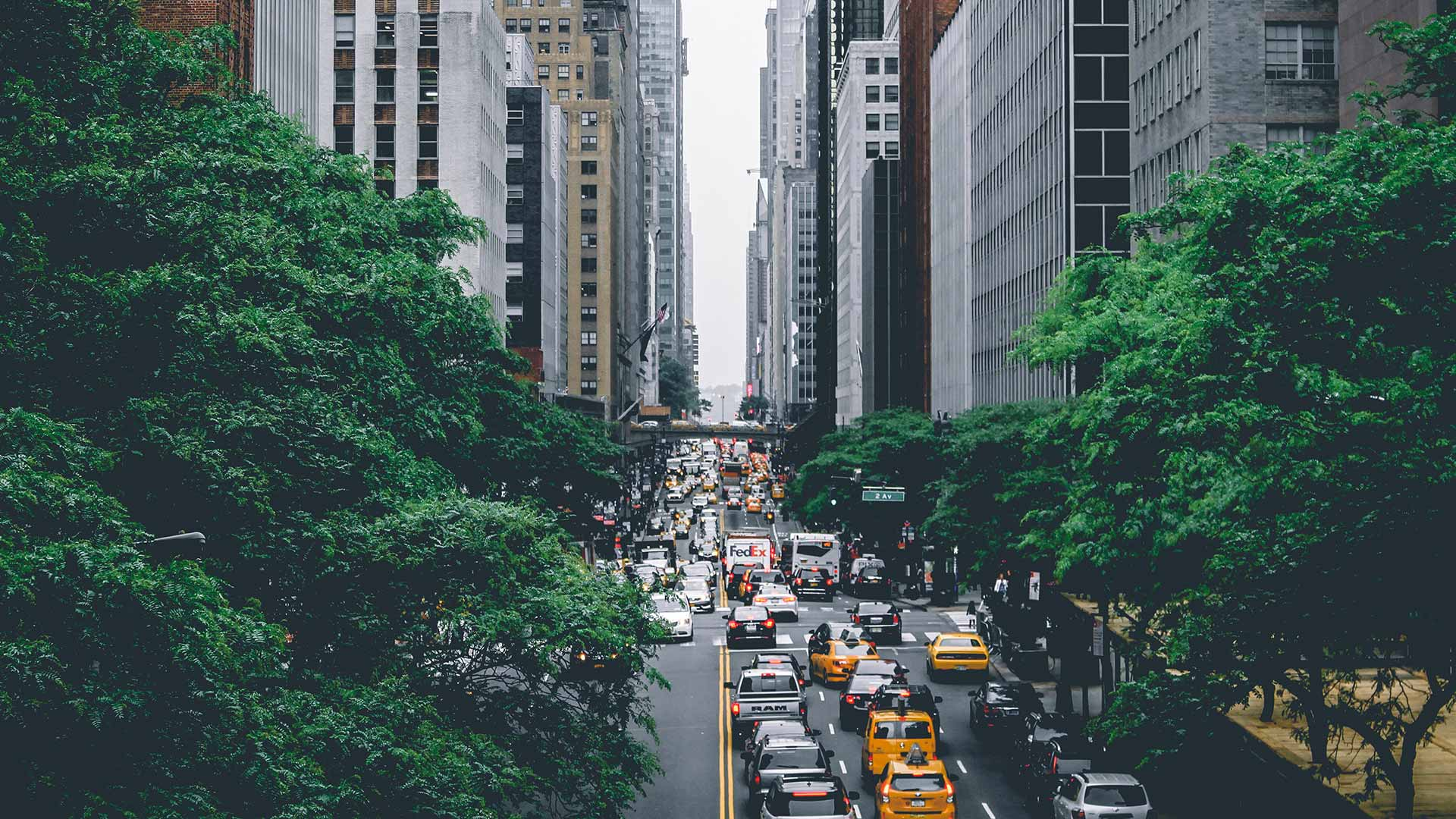 New York City in the Summer